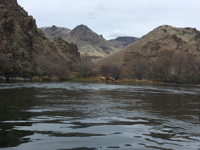 Upper Deschutes River 3 day