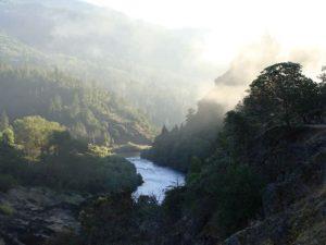 Rogue River Rafting 41